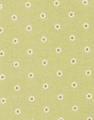 sg6235_lime daisy